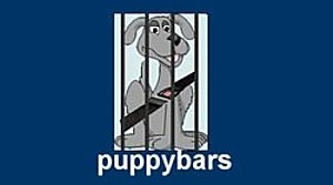 Dog minders groomers dog care sydney melbourne and brisbane dog barriers for vehicles melbourne vic manufacturer and installer solutioingenieria Gallery
