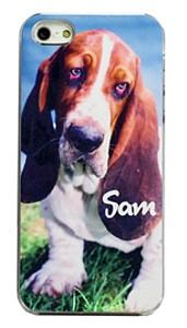 Dog Phone Covers