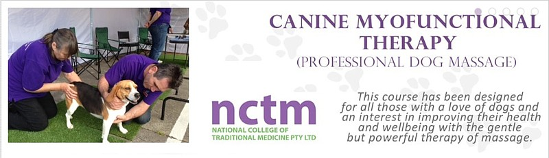 Canine Myofunctional Therapy