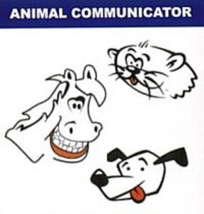 Pet Communicator