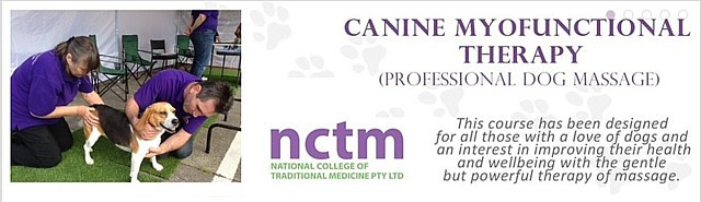 The National College of Traditional Medicine