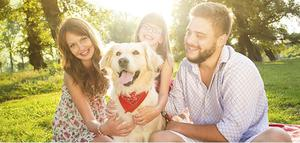 Pet Owners Insurance