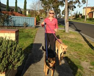 Paws in Patrol - Dog Walking and home visits for pets