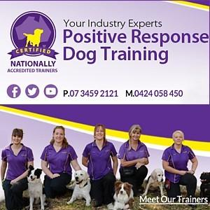 how to become a dog trainer brisbane
