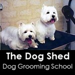 Dog Shed Grooming School